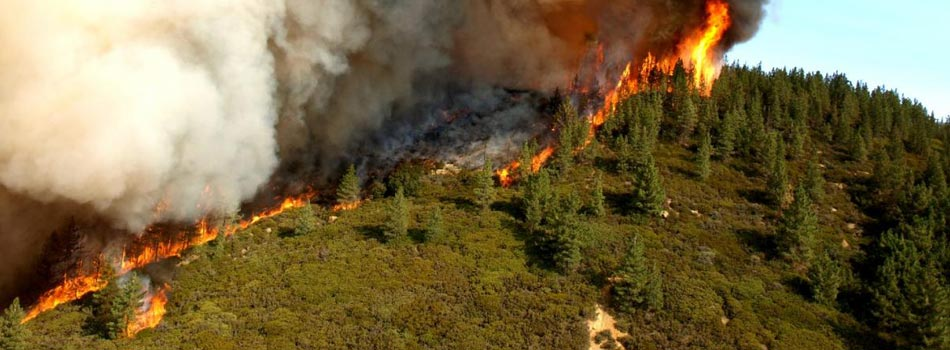 California Department of Forestry and Fire Protection for Emergency Response
